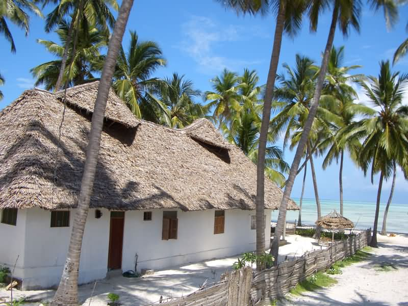 Stilig www.zanzibar-guesthouse.dk - oplev vores guesthouse ved stranden i UV-32
